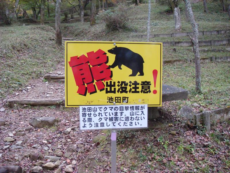 池田山 熊出没注意