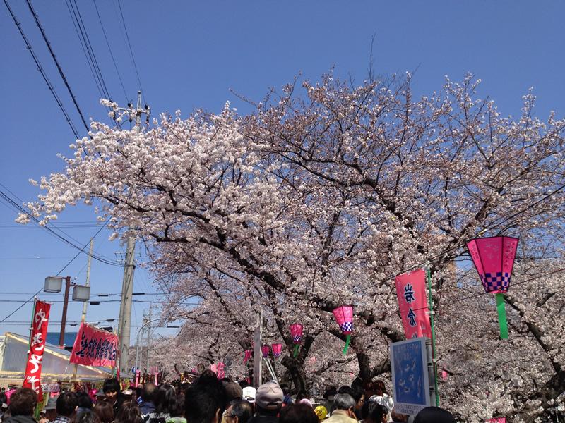 岩倉さくら祭り2012
