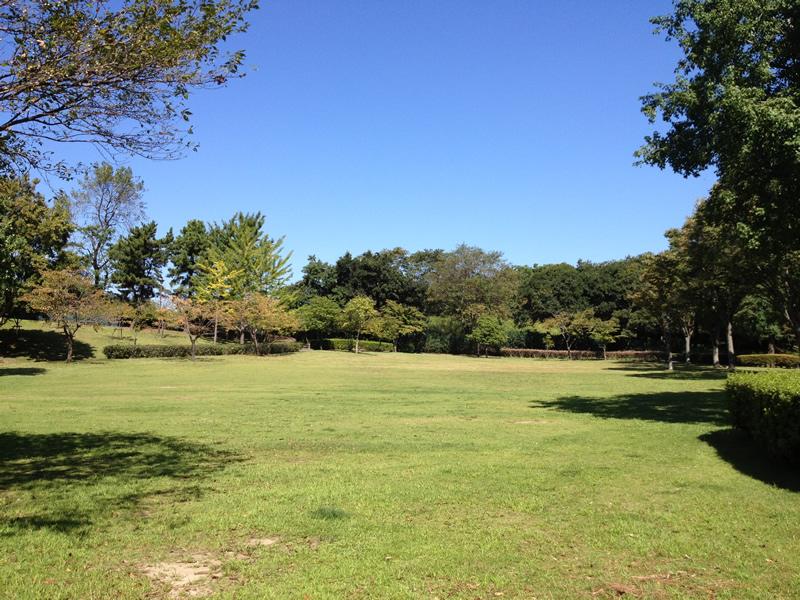 祖父江緑地の芝生広場