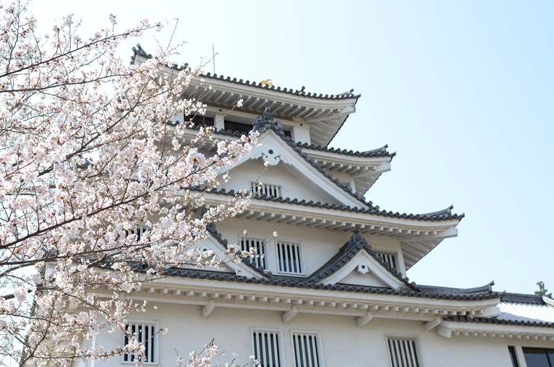 墨俣城を望む