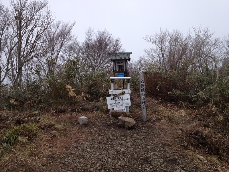 権現山山頂神社