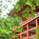 比叡山 横川中堂
