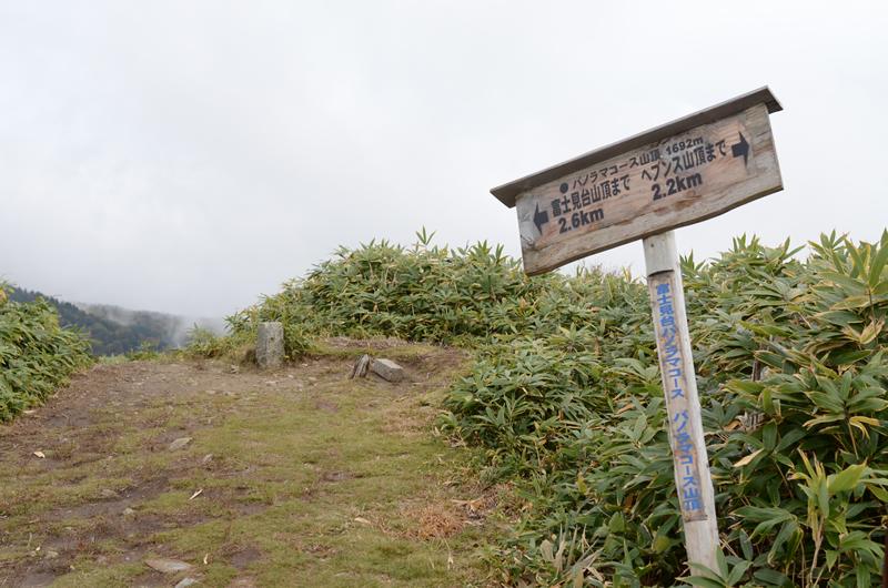 富士見台パノラマコース山頂