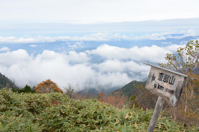 恵那山への分岐ルート