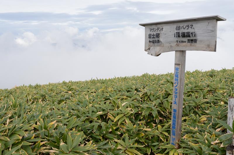 富士見台パノラマコースゴール
