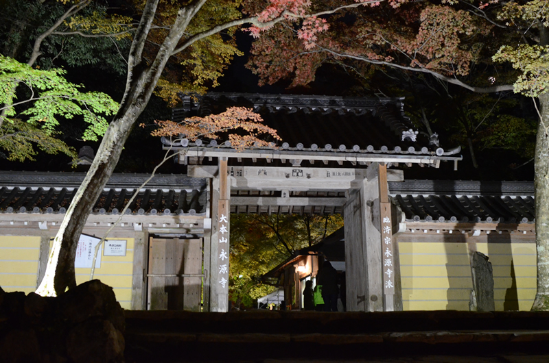 永源寺 夜の総門