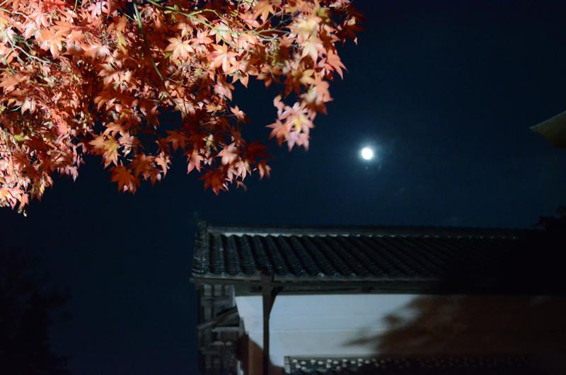 永源寺 ライトアップと月