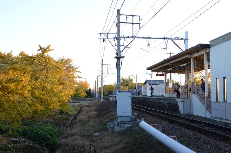 名鉄山崎駅とイチョウ