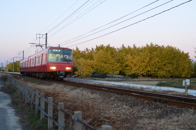 名鉄電車とイチョウの木