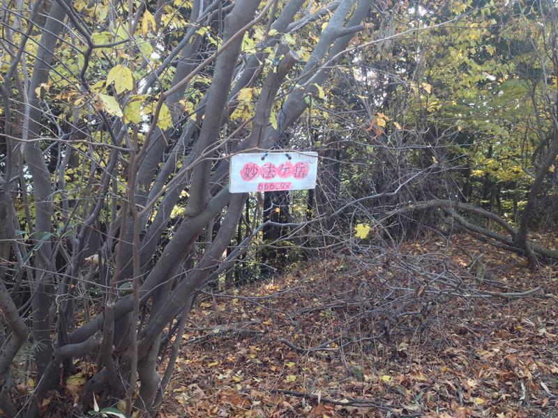 妙法ケ岳 頂上