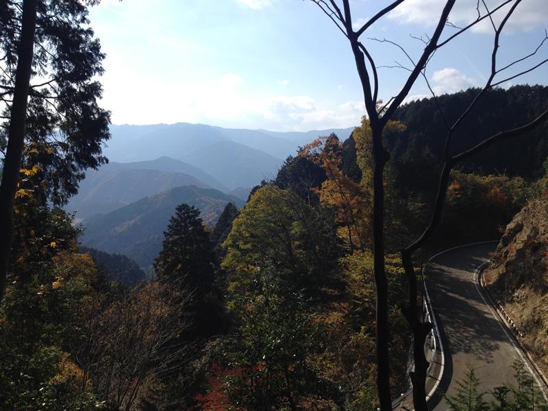 林道からみえる車道