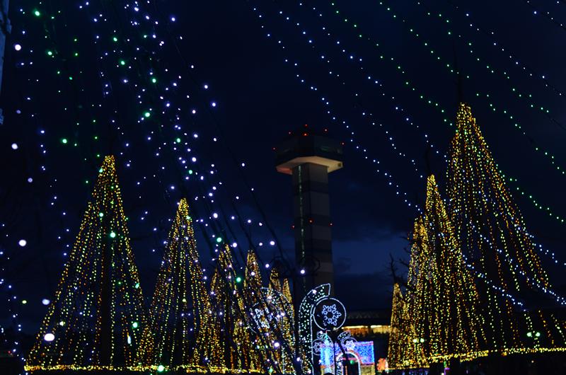 三川公園のイルミネーション夜景