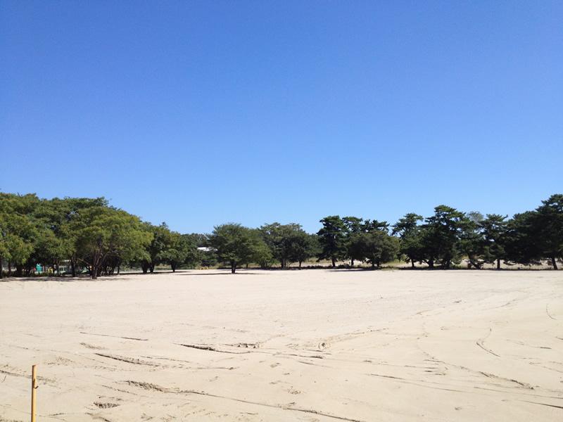 祖父江の砂丘