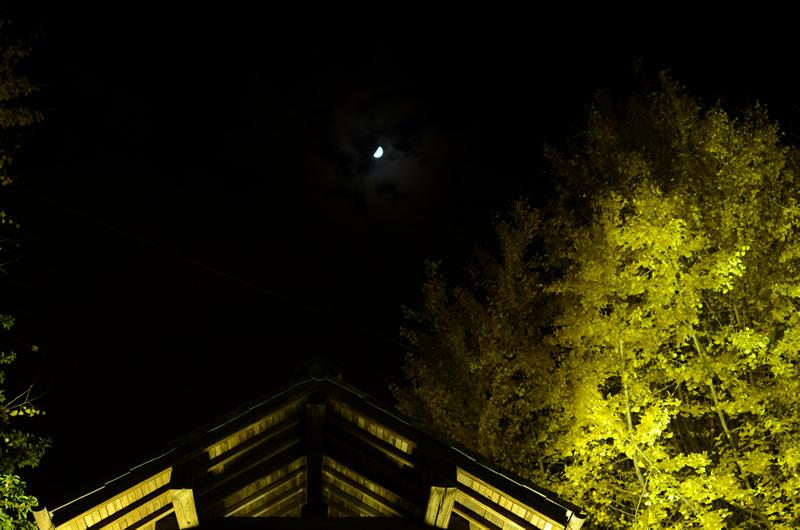 祐専寺 鐘つき堂の屋根とお月様