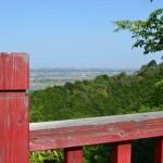 月見の森にある赤い橋から景色を望む