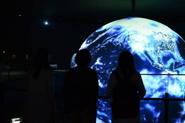 ニフレル水族館 映像アートを鑑賞