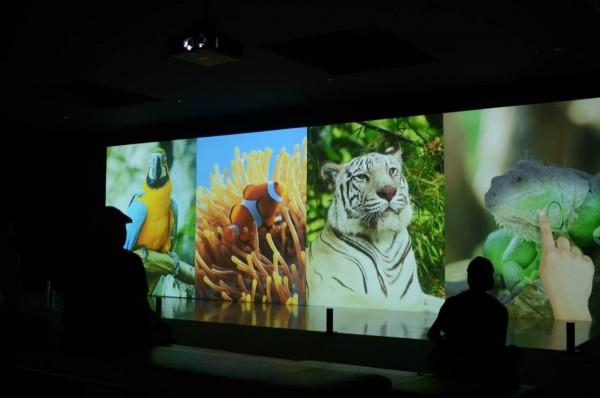 ニフレル水族館 映像作品